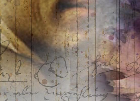 "Comic opera ""Le nozze di Figaro"" by Wolfgang Amadeus Mozart"