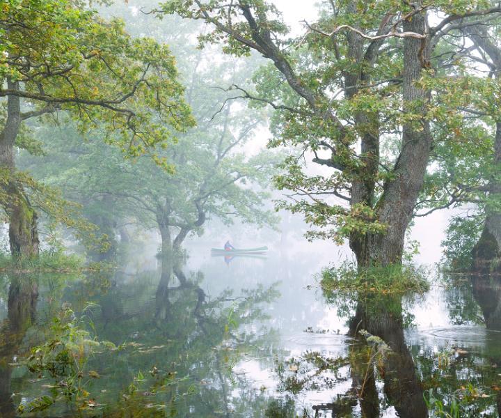 Der Nationalpark Soomaa