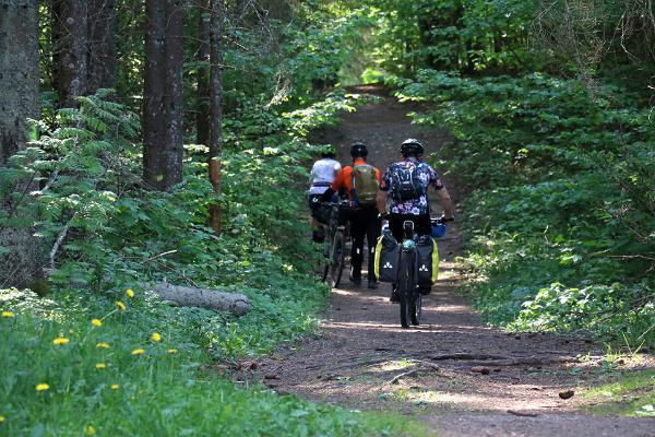 Äntu-Nõmme nature studies trail