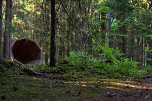 Metsälavat Võrumaalla