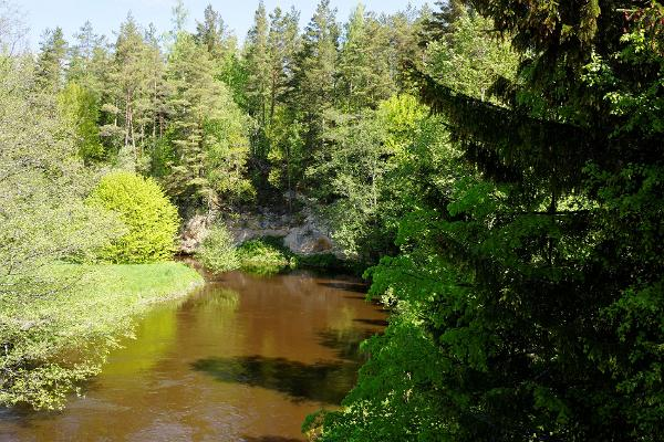 Vinso, Võhandu river