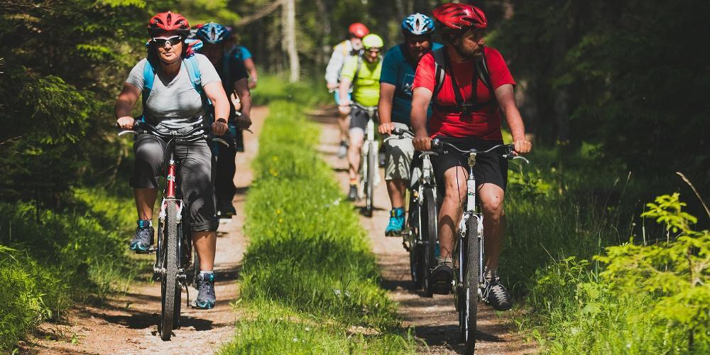 Bicycle travellers in Estonia