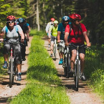 Cykelvandrare i Estland
