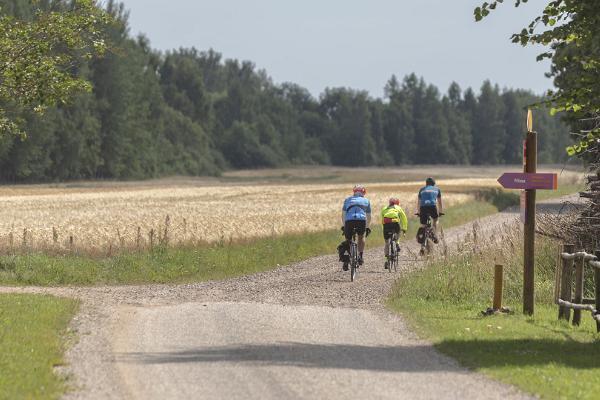206 - Alatskivi-Elistvere pyöräilyreitti