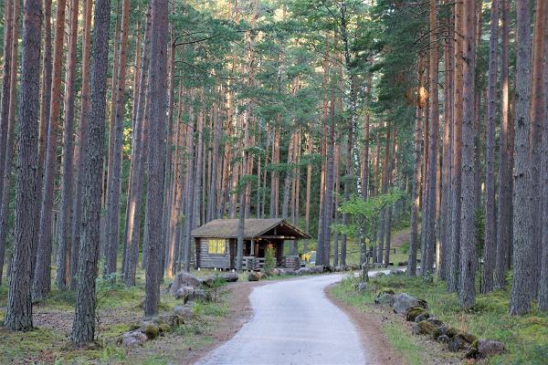 Nohipalu Valgjärv Meenikunno maastikukaitsealal