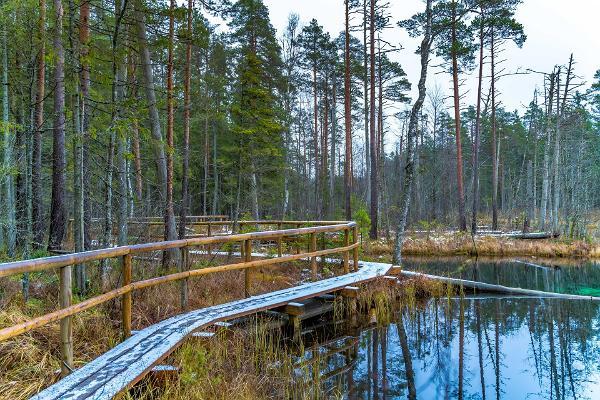 Matkad ja ekskursioonid Norra-Oostriku allikatel