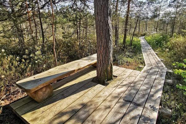 Учебная тропа Рийза в Национальном парке Соомаа
