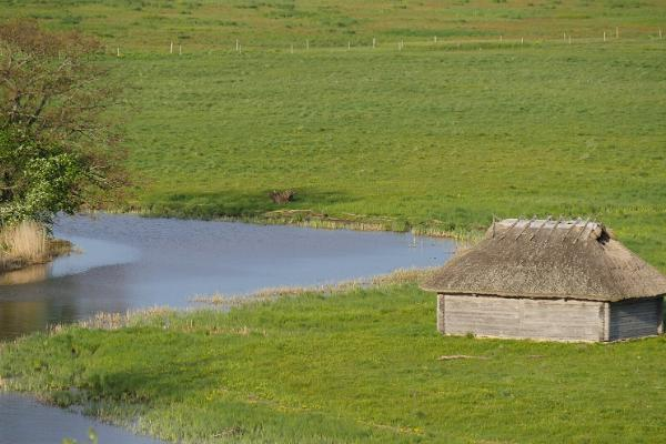 Fishing huts in Kirikuküla Matsalu
