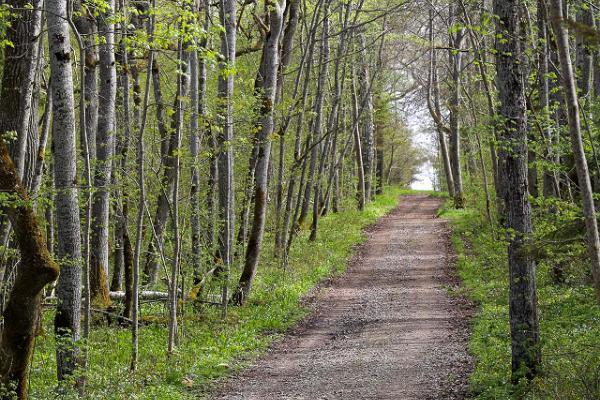 The Kirbla terrace hiking trail
