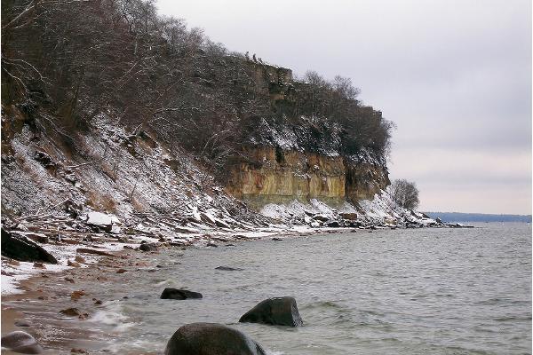 Türisalu limestone cliff and platform