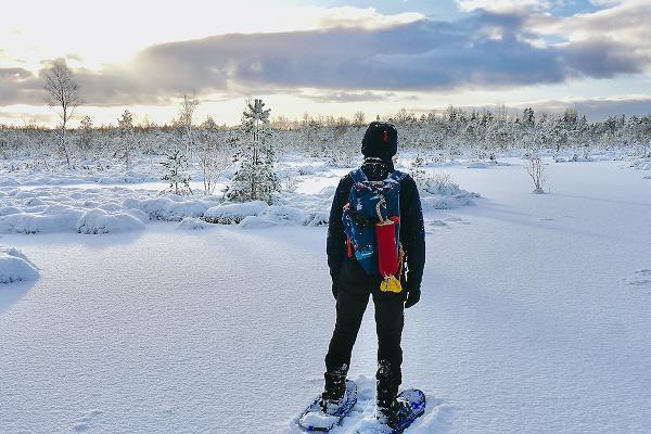 Летние и зимние походы на болото- и снегоступах по болоту Меэникунно