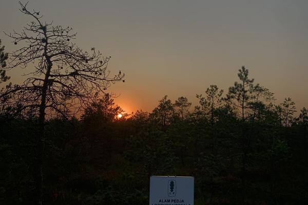 Selli-Sillaotsa õpperada päikeseloojangul