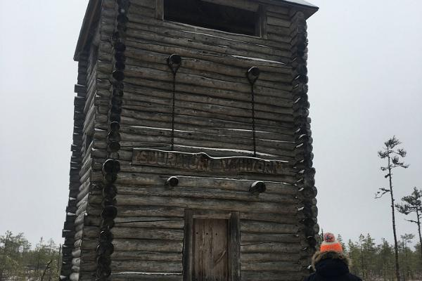 Selli-Sillaotsa õpperada talvel ning vaatetorn