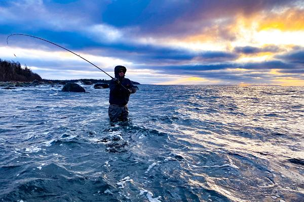 Jūras foreļu zveja