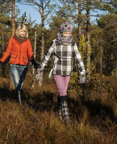 Autumn, bog, mire, Estonia, family