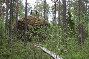 Lehrpfad Majakivi-Pikanõmme