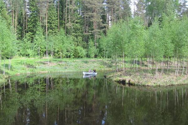 Waldbauernhof Männiku