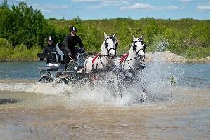 Voore Tallid (dt. Ställe) – Fahrt mit der Pferdekutsche mit Picknick