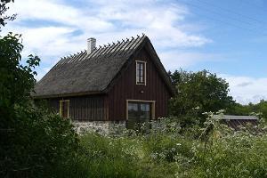 Bauernhof Rukkilille (Kornblume)