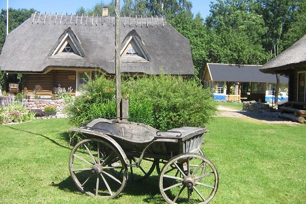 Peetri Tourist Farm