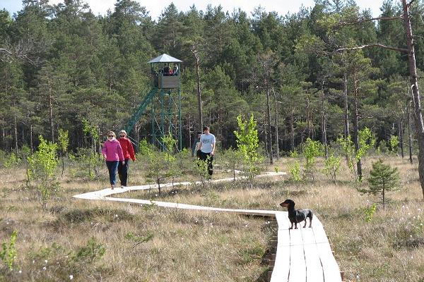 Ingatsi Nature Study Trail