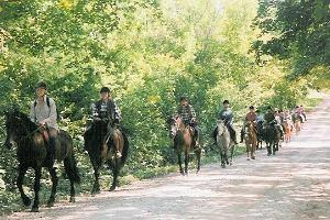 Ферма конного туризма «Тихузе»