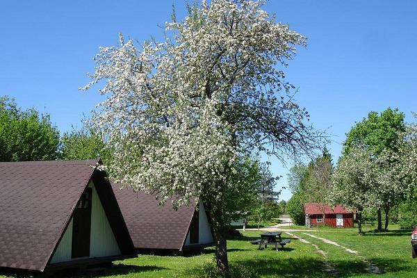 Aki Camping