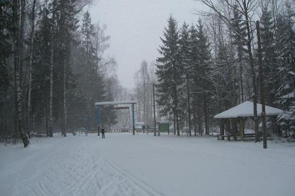 Kuremaa skiing tracks