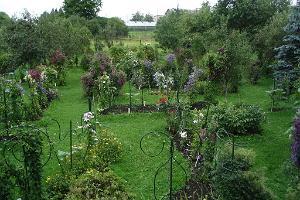 Besuch der Gartenbauhöfe im Dorf Karla