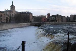 Narva kosed