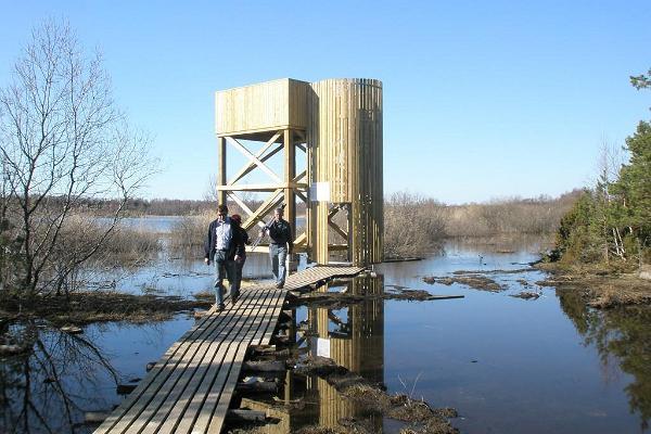 Natur-Vogelbeobachtungsturm bei Linnulaht