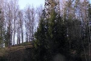 Смотровая вышка и место отдыха на горе Теллингумяги