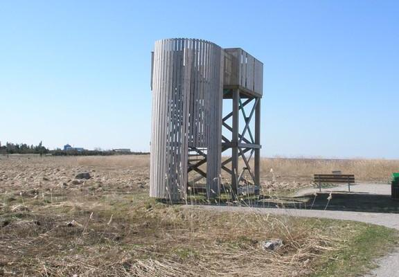 Roomassaare birdwatching tower
