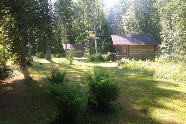 Haaviku gård