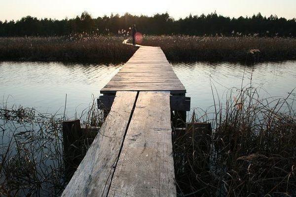 Valgejärven luontopolku