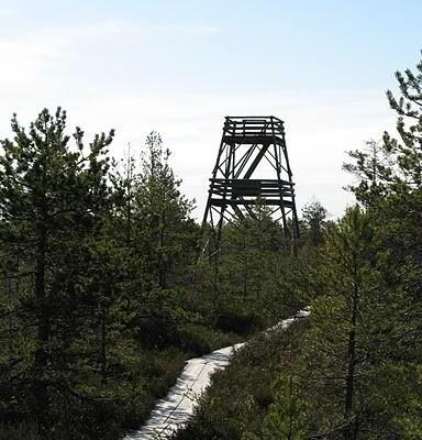 Järvi-Aegviidu matkarada (27 km)