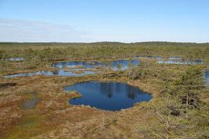 Liiapeksi–Aegviidu hiking trail (27 km)